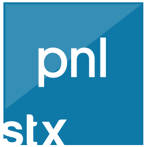 Curso_PNL_Programacion_Neurolinguistica_Stratex_Institute
